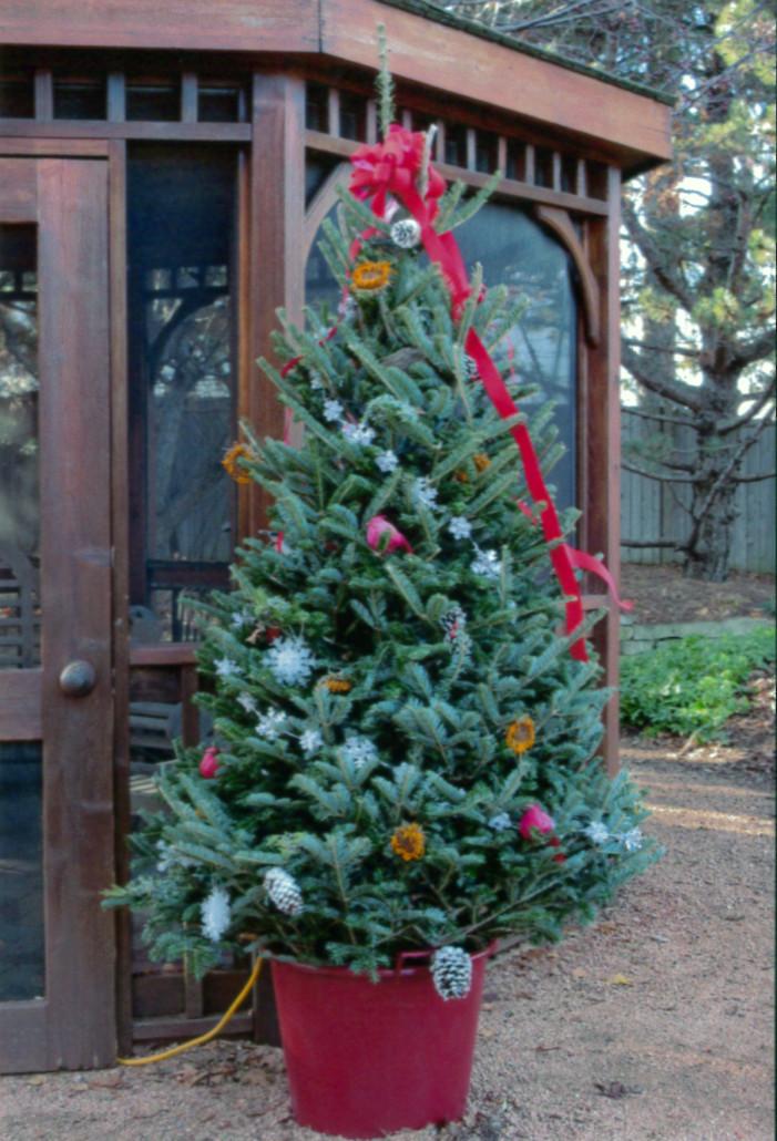 "Holiday ""Bird"" Tree"