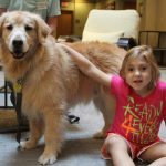 Katelyn and a therapy dog