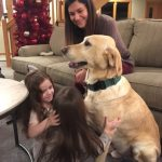 Archie, a therapy dog, playing with three girls
